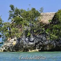 Une côte sauvage et préservée : Sipalay