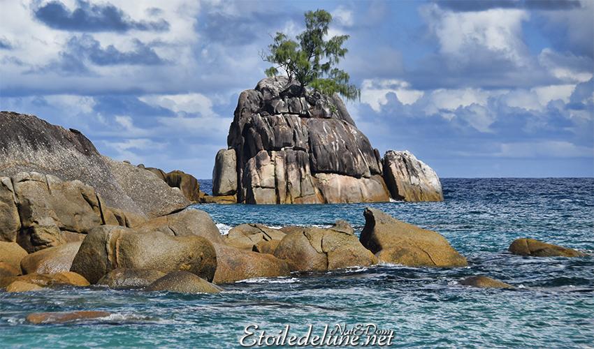 Seychelles : Quand on aime, on ne compte pas ! (Anse Soleil)
