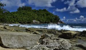 Corail et Granit les deux socles des Seychelles