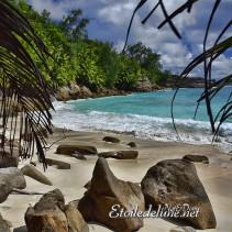 Seychelles, Anse Intendance, Mahé