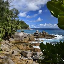 Seychelles, Sud Mahé, un bout du monde bien tranquille !