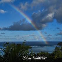 Seychelles, quand partir? Ou que faire les jours de pluies…