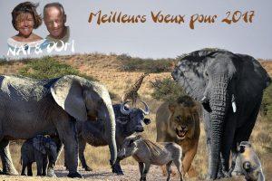 VOYAGE EN AFRIQUE AUSTRALE