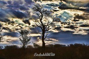 L e ciel se plombe à l'approche de l'été austral