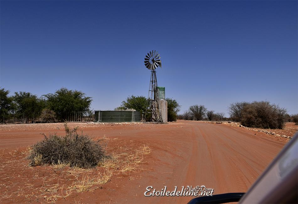 Les pistes rouges du désert du Kalahari
