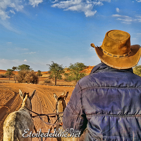 Le Kalahari, un enchantement polychrome (Etape à Bagatelle)