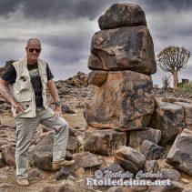 Le Mesausorus, trésor du désert !  Un gentil reptile qui fait voyager les continents…