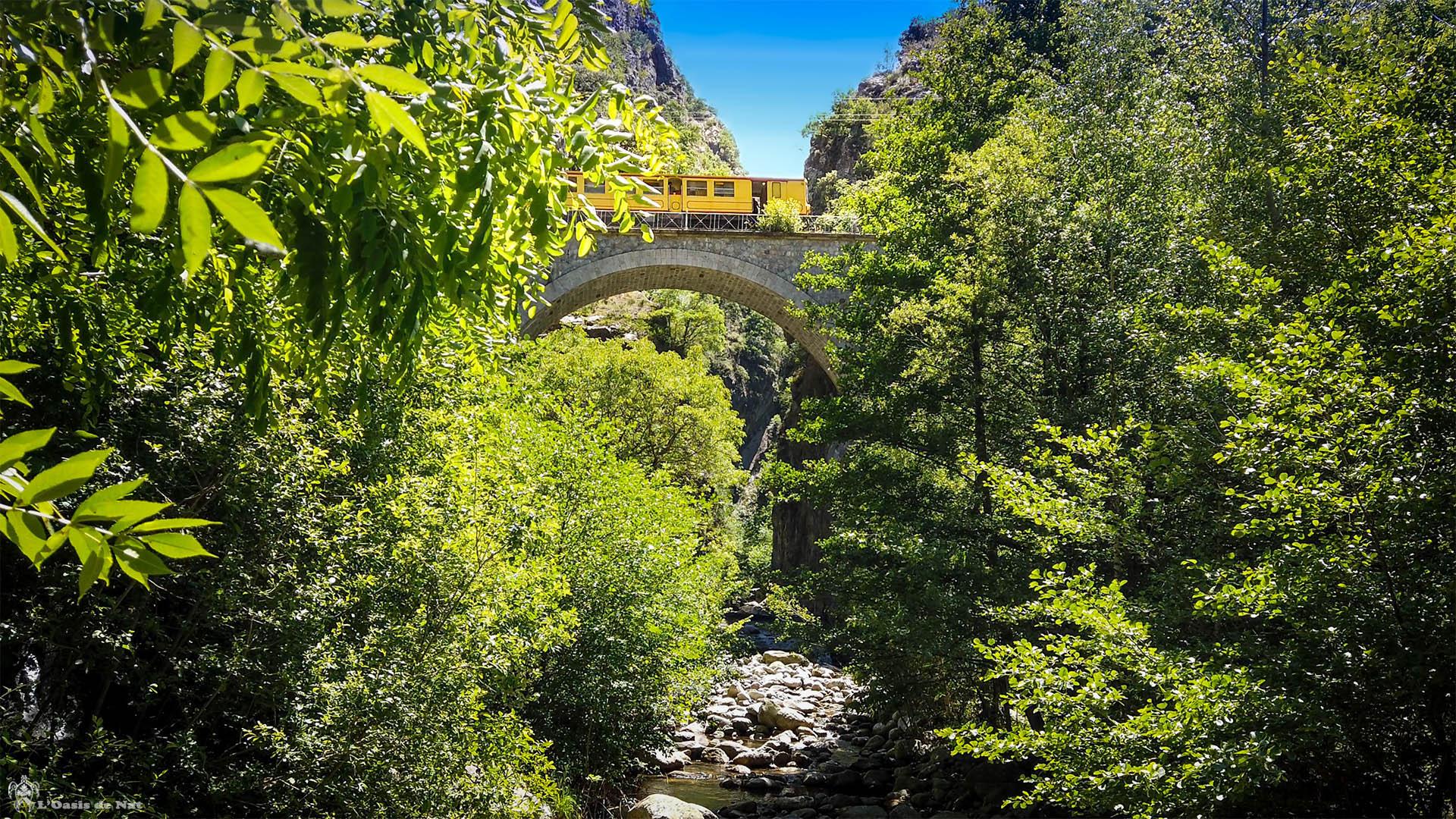 Train jaune - Gorges de la Carança - rivière - forêt - Pyrénées orientales