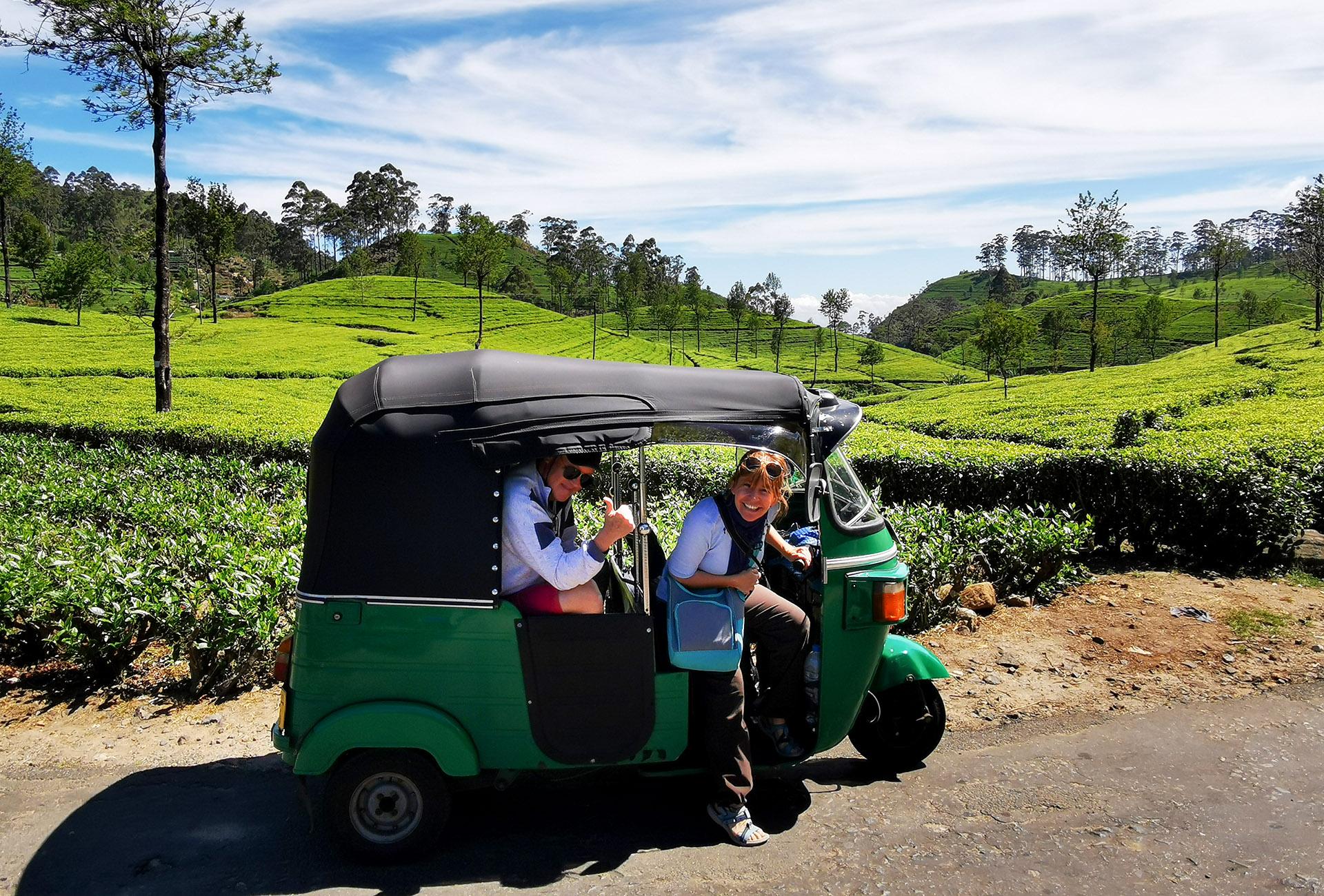 Sri lanka - Tuk tuk - plantation de thé