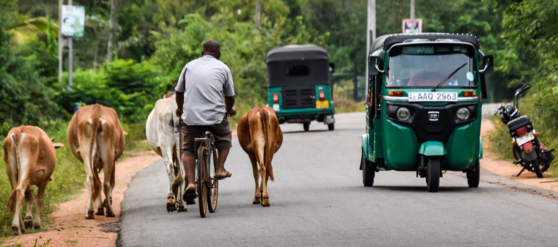 Sri Lanka, routes, roadtrip,