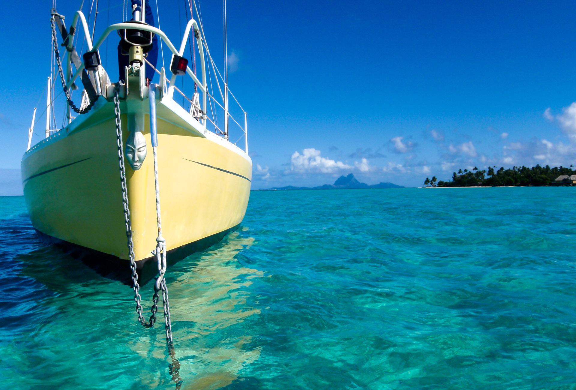 etoile de lune - bora bora - jardin de corail - taha a