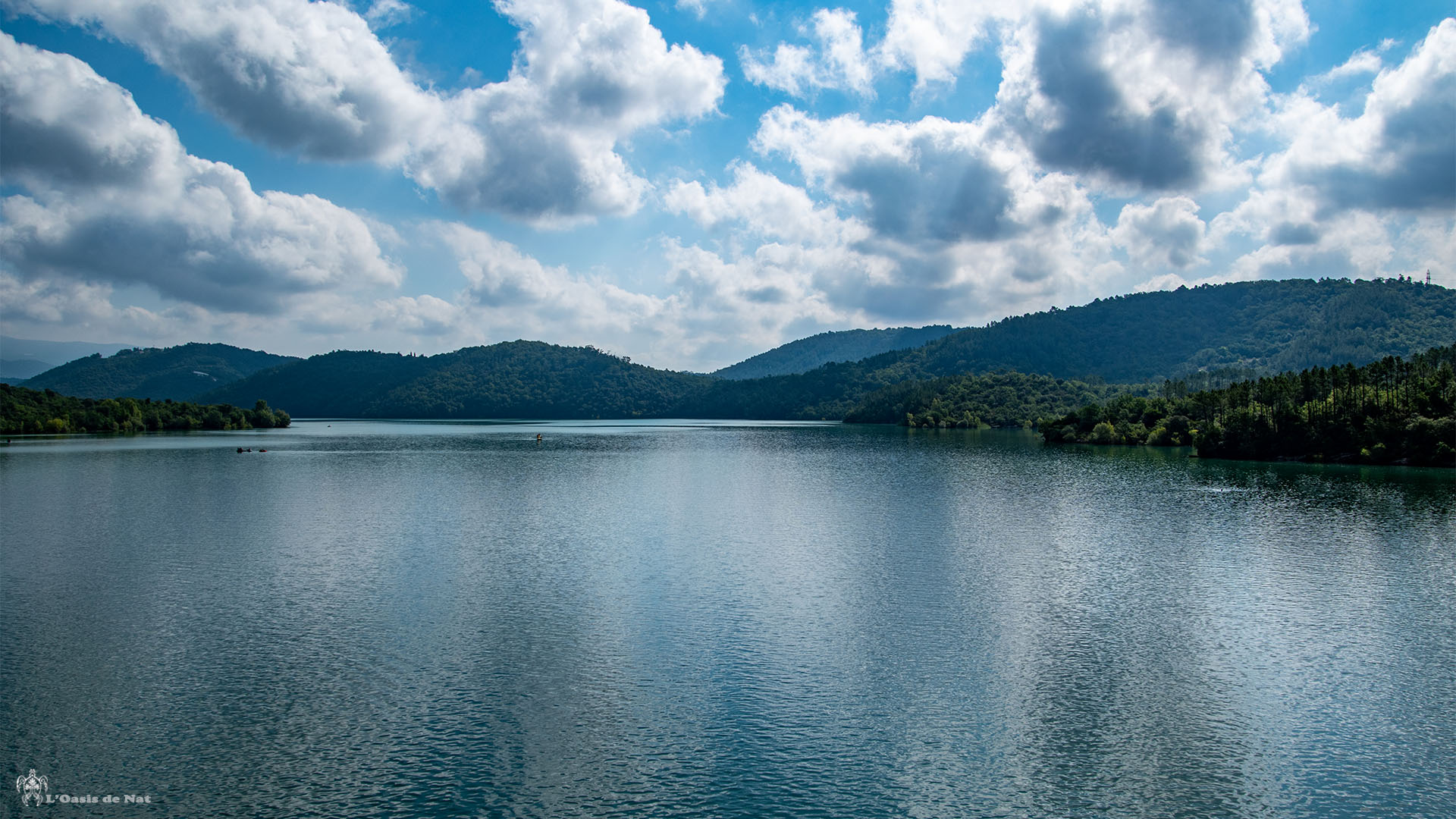 Lac de Saint Cassien_france-Alpes côte d'azur provence_l'oasis de nat