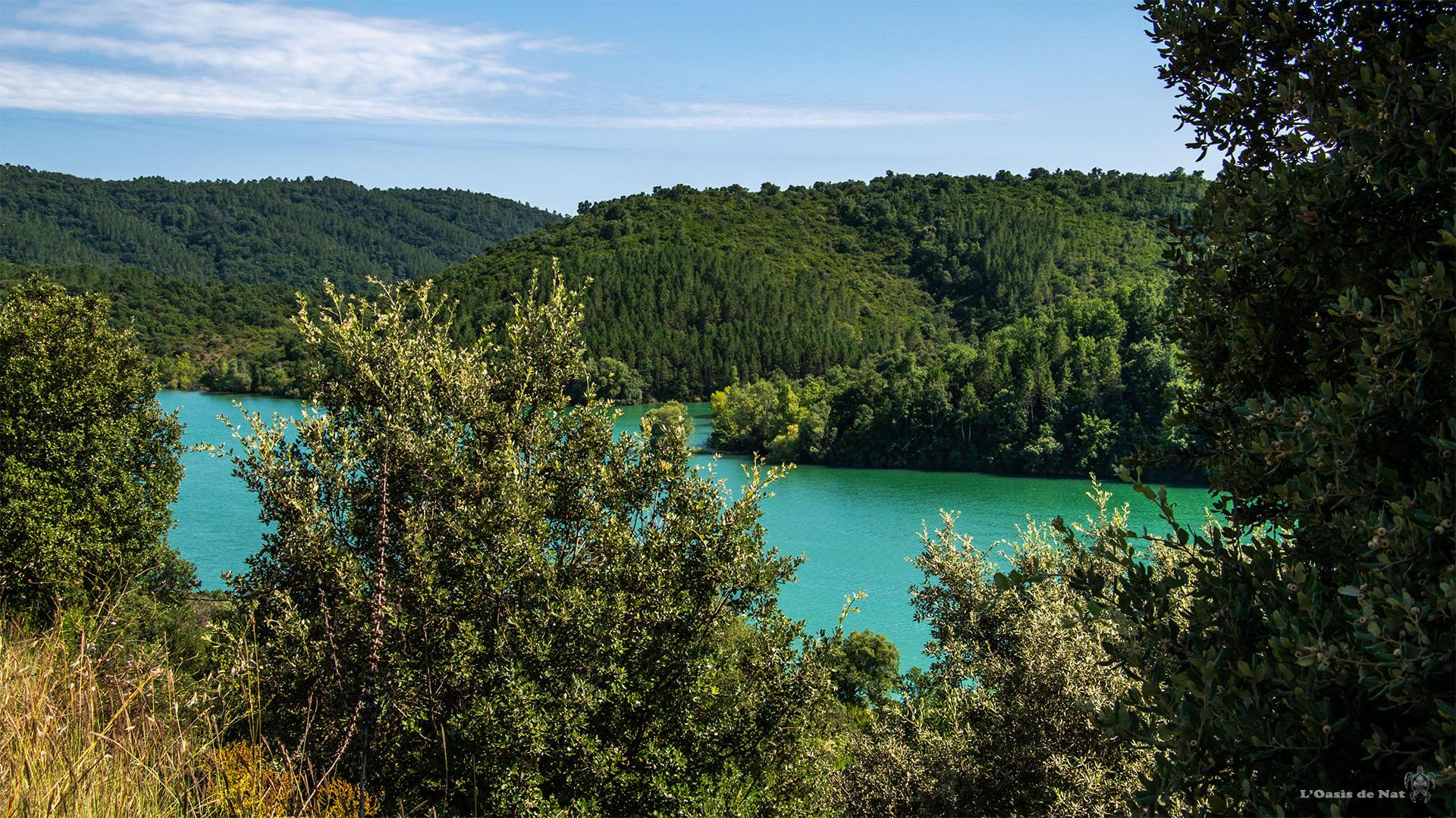 Lac de Saint Cassien_france-Alpes côte d'azur provence_l'oasis de nat (4)