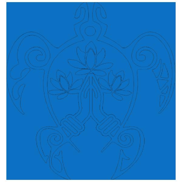 Logo Bleu Tortue 600x600