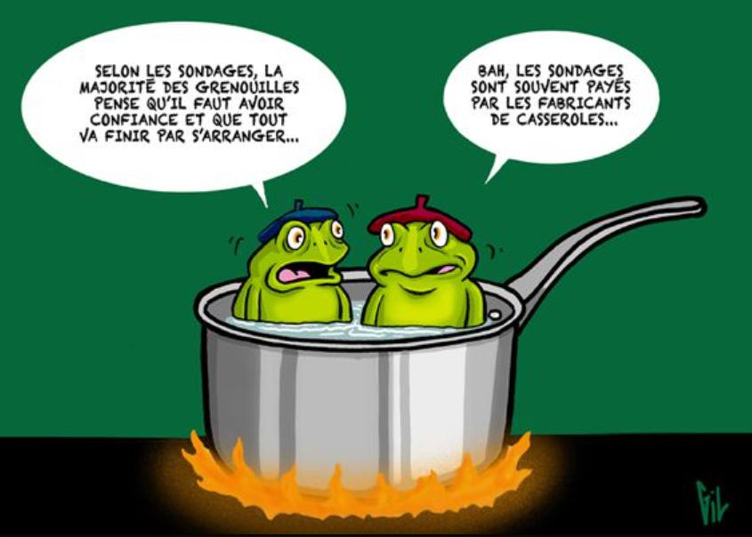 Hotfrogs, gilblog.org, GAFAM, L'oasis de Nat, Grenouilles