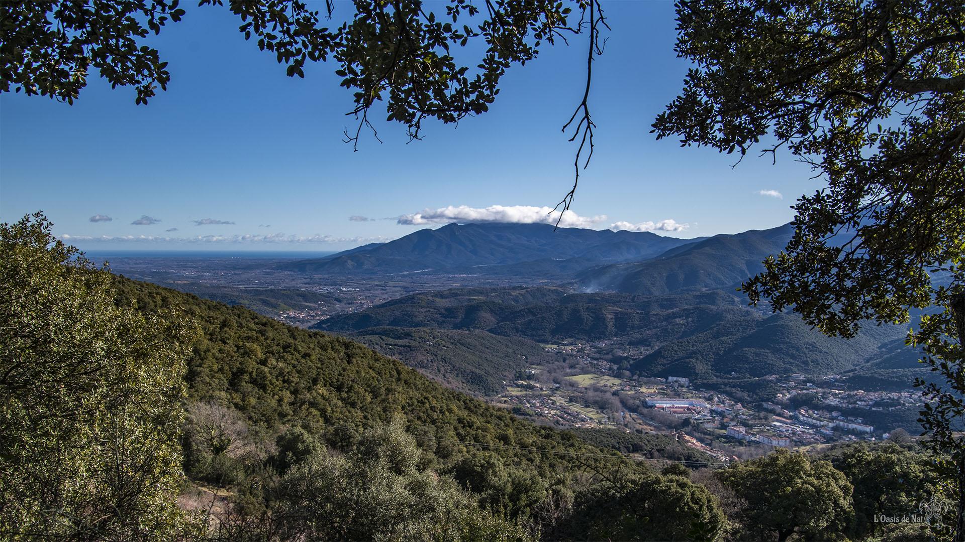 Depuis le chemin, vue sur Amélie en contre-bas, la vallée du Vallespir, Céret, le massif des Albères à la frontière espagnole qui se jette par la côte Vermeille dans la Méditerranée