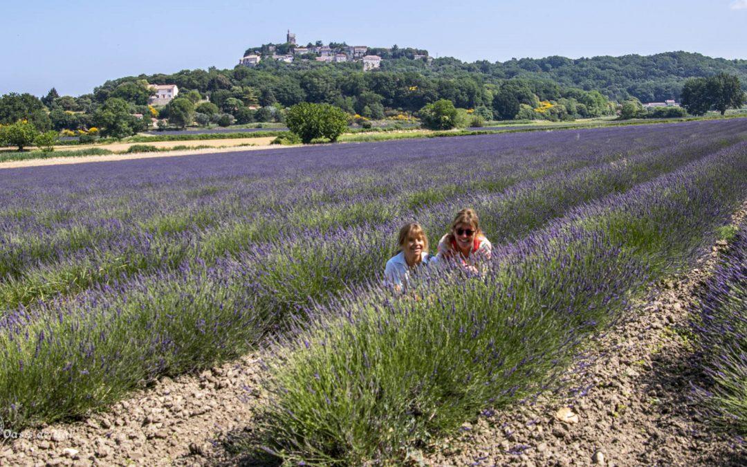 L'Amitié au cœur des lavandes. Une journée parfaite en Drôme provençale